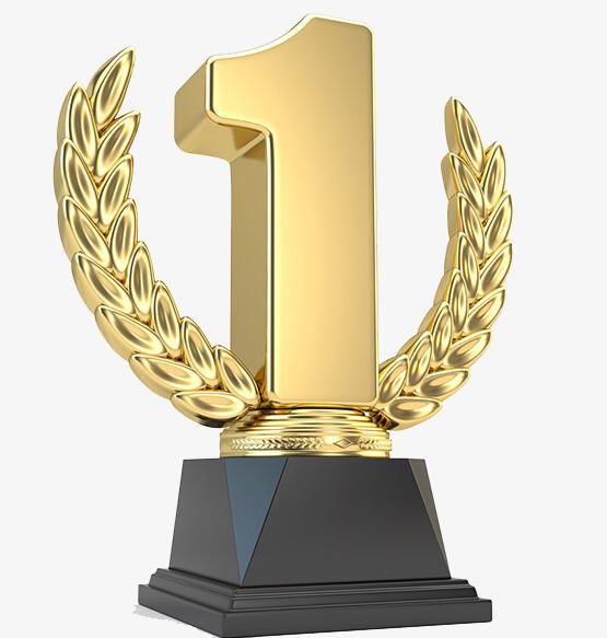 إنجازاتنا فخر